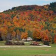 2010 – Autumn in Vermont