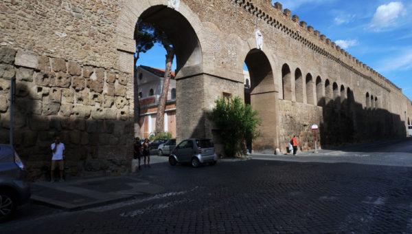 leotine_walls